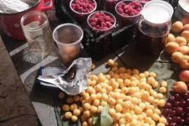 Продаю саженцы Ежевики,малины,клубники,смородины и